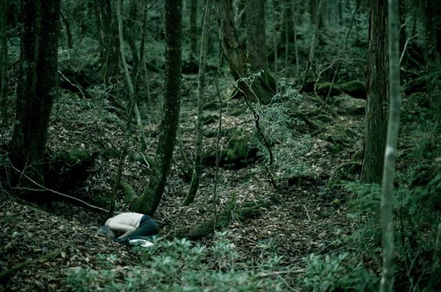 """Theo thống kê, kể từ năm 1970, mỗi năm ít nhất là hàng chục, còn đa số là hàng trăm người tìm vào khu rừng này để """"về cõi thiên thu""""."""