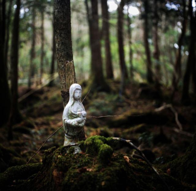 Dù có rất nhiều giả thuyết được đưa ra, nhưng bí ẩn về khu rừng tự sát dưới chân núi Phú Sĩ vẫn bị bỏ ngỏ. Vì quá nhiều người tự sát trong khu rừng này, nên giờ đây, khu rừng Aokigahara là một địa điểm ám ảnh và đáng sợ nhất đối với người dân Nhật Bản.