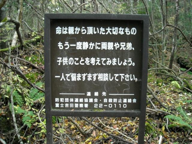 """Vì có quá nhiều người đến Aokigahara để tự vẫn, nên các nhà chức trách đã cho đặt những tấm biển thông báo có đề dòng chữ """"Hãy suy nghĩ lại. Xin hãy tham khảo ý kiến các nhà tư vấn trước khi bạn có quyết định tìm đến cái chết"""" ngay trước cửa rừng và treo trên thân cây trong khắp khu rừng."""